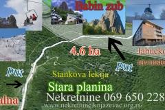 stankova-lekija-copy